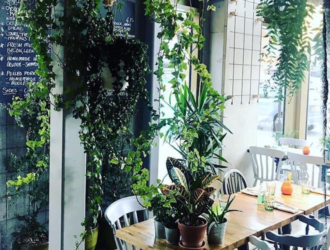 The leafy interior at Street Urchin Restaurant, Manchester